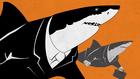 Látott már fehér cápát a Liszt Ferenc téren?