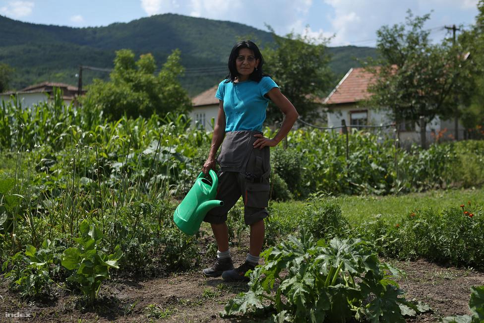 """""""A 22 ezer forintos segélyhez képest ez a 49 ezer mégiscsak jobb, megélni viszont ebből sem lehet"""" – mesélte fizetéséről a Vera, a vajdácskai közmunkásként sittet hordó és takarító Vera. Májustól júliusig három helyen, a borsodi Vajdácskán, a nógrádi Mátraverebélyen és a budapesti XII. kerületben jártunk közmunkaprogramokon, hogy megnézzük, hogy él a több százezer közmunkás. A BAZ megyei Vajdácskán 1317-en élnek, a lakosság több mint 10 százaléka, 146 fő közmunkás. A képen Csemer Erzsébet az általa művelt önkormányzati mintakertben áll, ahol szinte az összes honos étkezési növény megtalálható, van fokhagyma, cukkini, kukorica, borsó, salátafélék, kapor, paradicsom, paprika és tök is. A vizet a közkútról hordja.                          A közmunkások télen sem lazsálnak: a napocskás szintfelmérőjéről elhíresült alapkompetencia-fejlesztésben ötvenezer közmunkás brummog, szótagol, számol kiskacsákat és tanul meg kopogni és bólogatni négy hónapon át, hogy jobban megfeleljen a munkaerőpiac igényeinek."""