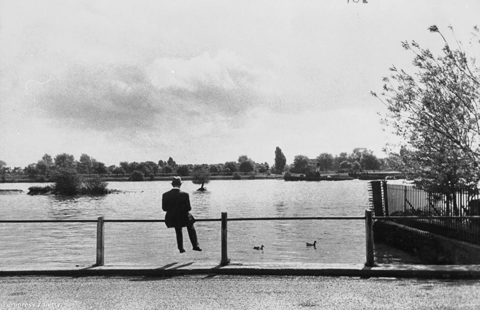 Alec Guinness leghíresebb szerepe Obi-wan Kenobi figurája volt, a színész azonban az egész trilógiát utálta és haláláig ostobaságnak tartotta. A képen éppen szöveget tanul, miközben üldögél egy tó partján 1952-ben. Ekkorra már túl van első Oscar-jelölésén is, a díjra még öt évet kell várnia (Híd a Kwai folyón, legjobb férfi mellékszereplő). Cornell egyébként rengeteg képet készített a színészről, olyat is, amin látszik az arca.