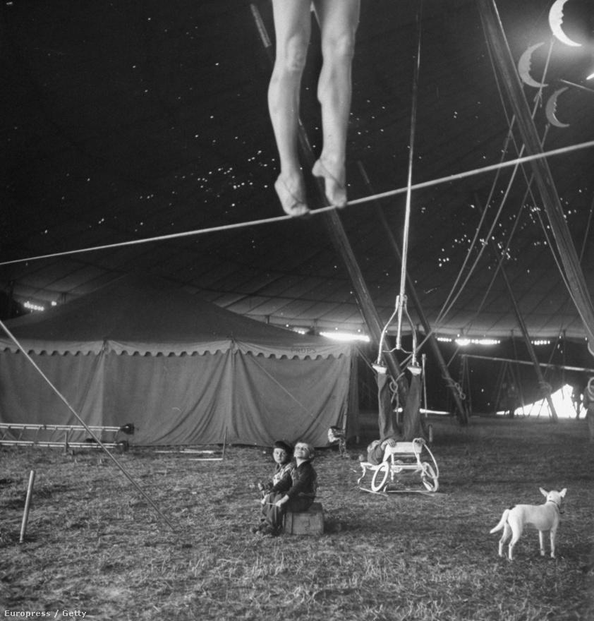 Habár a Ringling cirkusz ma már csak az állatvédelemmel kapcsolatos hírekben tűnik fel leginkább, 1949-ben Leen még a cirkusz varázslatos világáról készített riportot a Life-nak. A képen két kisgyerek nézi ámulva, ahogyan a kötéltáncos Lola gyakorol, miközben egy akrobata egyensúlyoz a háttérben. Az előtérből természetesen nem maradhatott ki a fehér kutya sem.