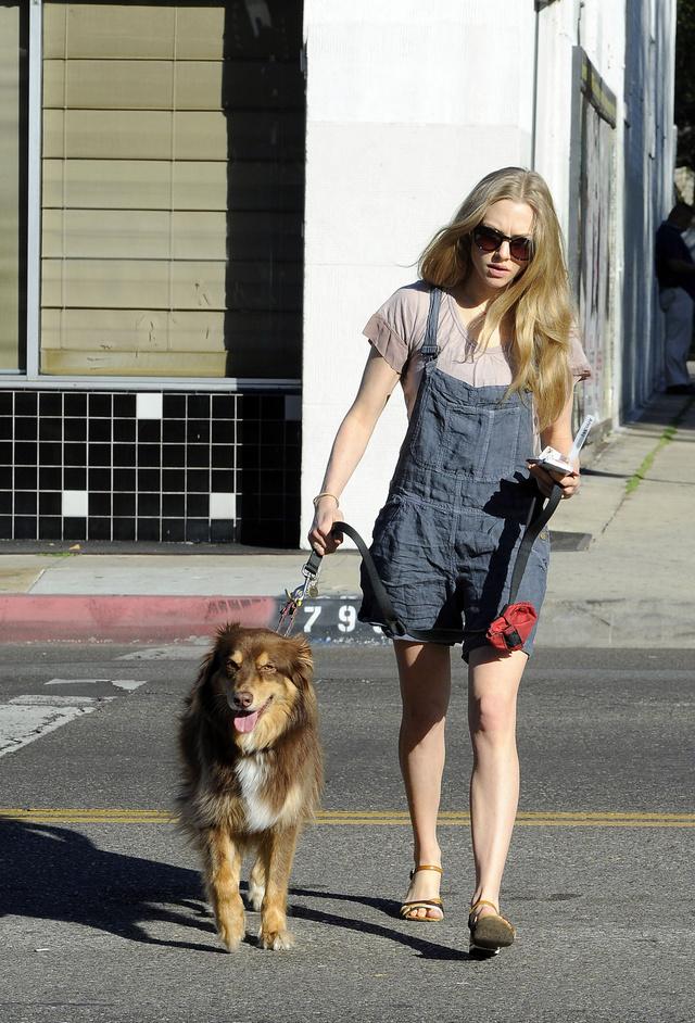 Amanda Seyfried és kutyája