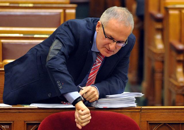 Simon Gábor a parlamentben (2011)