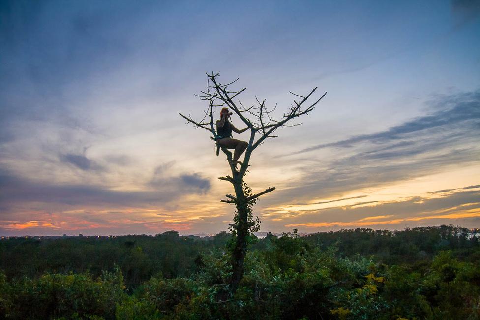 A könyvbe az elmúlt tíz év során készült képeket válogatta össze a fotós. Ezen egy lány iszik egy fa tetején, Queensben.