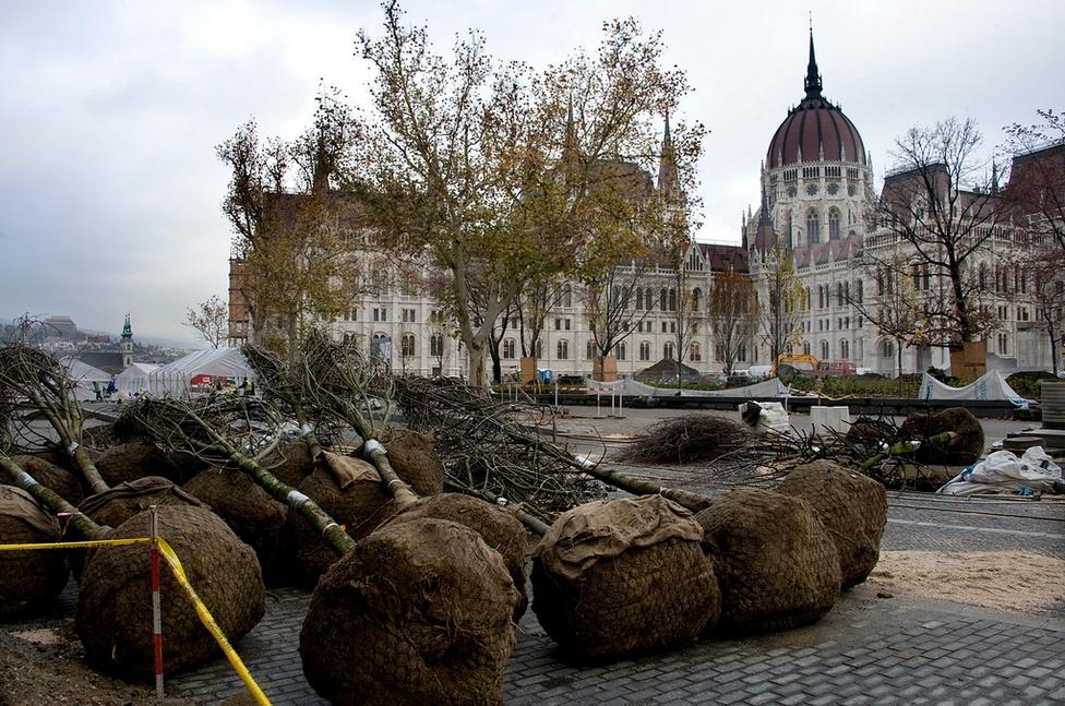 A Kossuth tér megújításának egyik legvitatottabb kérdése a fák egy részének kivágása, cseréje volt. Ellenzői szerint barbár pusztítás történt, ráadásul egy olyan területen, ahol amúgy is igen kevés a zöldfelület. A terv védelmezői szerint csak eltávolították a minden koncepció nélkül elültetett fákat, hogy végre érvényesülhessen az Országház eredeti építészeti koncepciója. Az új ültetések már tájépítészi tervek alapján kerültek a helyükre.