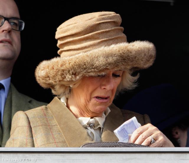 Camilla, Cornwall hercegnéje ki se látott a bunda alól.