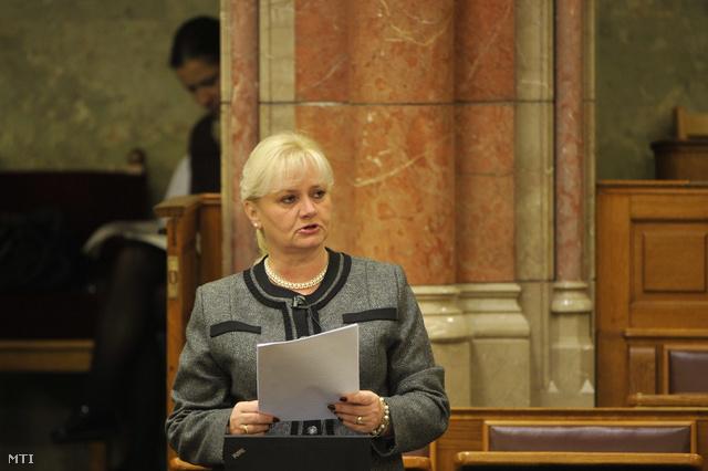 Menczer Erzsébet a Fidesz képviselője