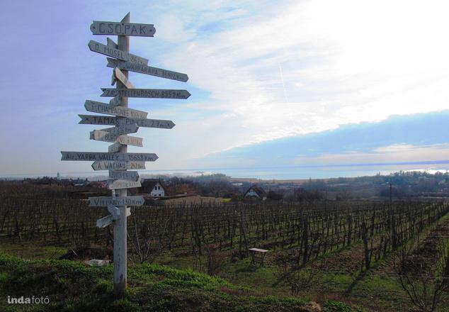 Csopakról nagyok sok út vezet a borospincékbe