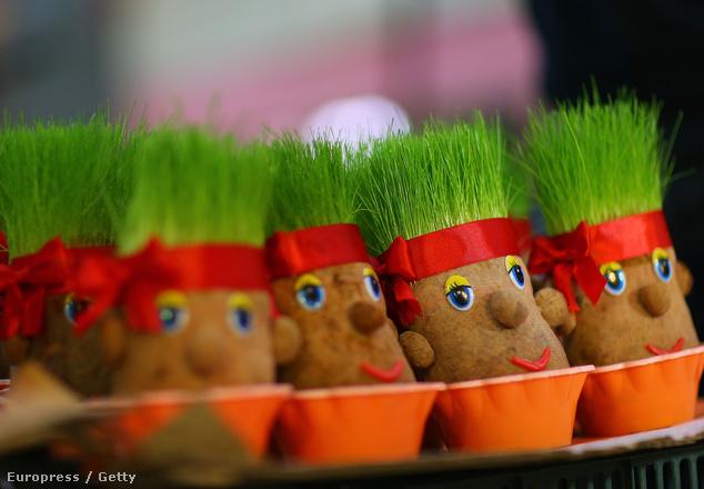 Az ünnep elengedhetetlen tartozéka a zöld fű, így sok helyen ilyen fűfejeket árusítanak