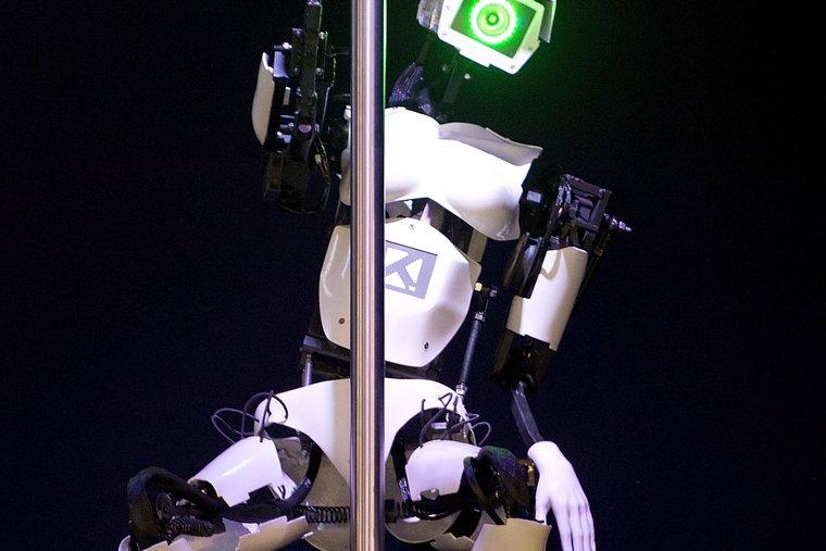 Béreljen rúdtáncos robotot egymillió forintért!