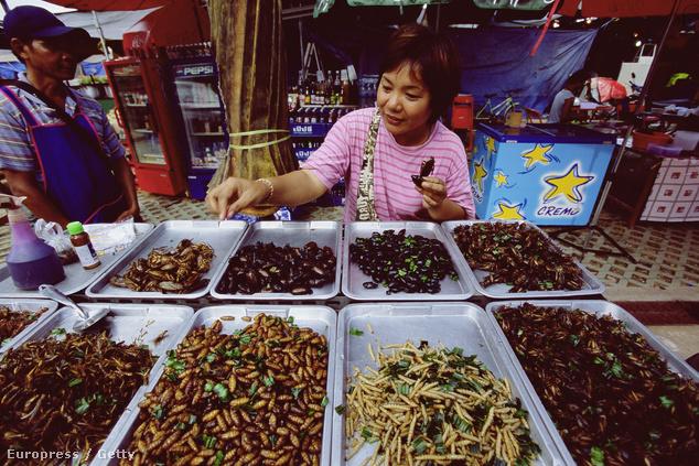 Szárított, sós rovarok Thaiföldön, Ubon városban. Szójaszósszal, fűszeresen nejlonzacskóból fogyasztandó
