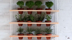 Hét DIY növénytároló, amivel feldobhatja a lakást