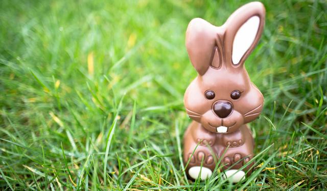 Csokibékát is vehet húsvétra