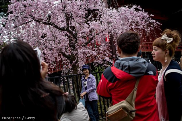 Fotózkodás az Ueno parkban