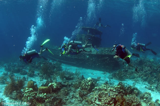 A búvárok imádják az elsüllyedt roncsokat (képünk a Holland-Antillákon, Saba-nál készült)