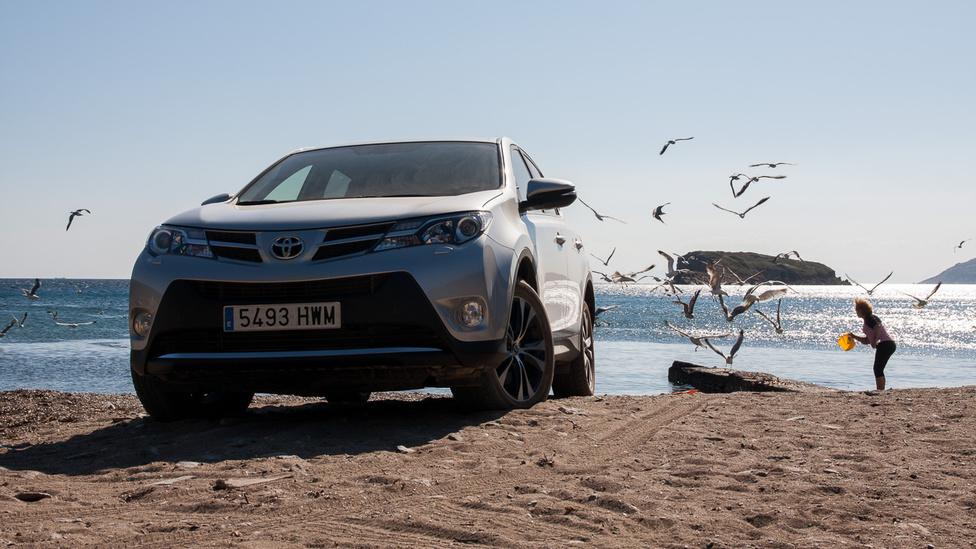 Ha messzire, az autó és a sirályok mögé nézel, a szigeten túl, a végtelen távolban ott van valahol Afrika