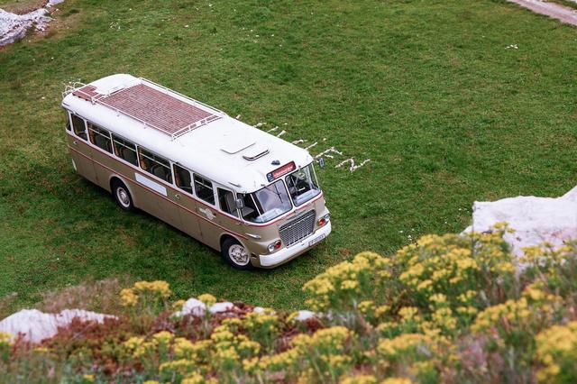 Nem a busz neve az