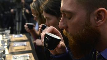 Hol isszák a legtöbb kávét?