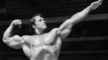 Miért van a férfiaknak mellbimbójuk?
