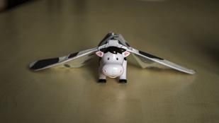 Repülő tehén őszi lehangoltság ellen