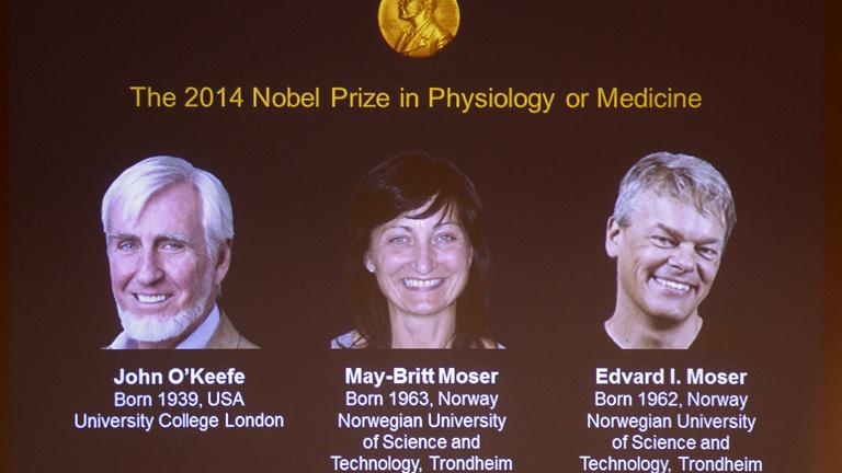 A helymeghatározás agyi folyamata ért Nobelt idén
