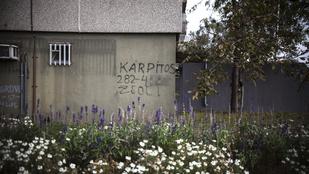 Így hirdet Zsolt, a street artos kárpitos