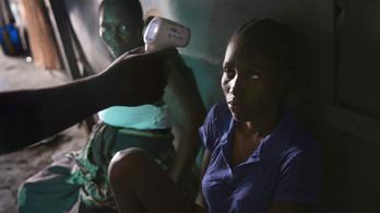 Heteken belül kész az ebola ellenszere