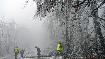 Ne menjen katasztrófaturistáskodni a lefagyott erdőkbe!