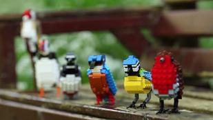 Madárrajongókra hajt a Lego