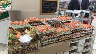 Ugye, rég szerette volna már saját kezűleg válogatni a tojást a hipermarketekben?