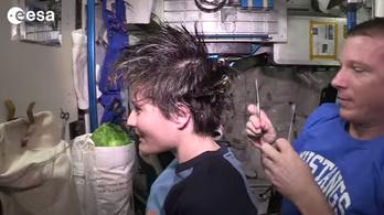80 millió forintba került a világ legdrágább hajvágása