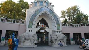 Bomba miatt kiürítették a Fővárosi Állatkertet