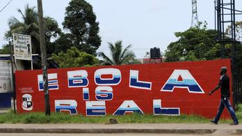 Mutálódott az ebola