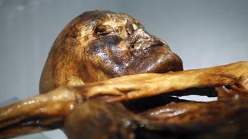 Új tetoválást találtak Ötzin, a gleccsermúmián