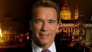 Félmillió egy közös kép Schwarzeneggerrel