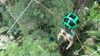 Már a dzsungelben is van Street View