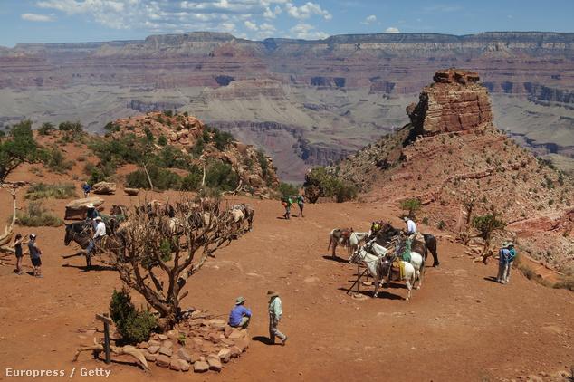 Grand Canyon, Amerikai Egyesült Államok
