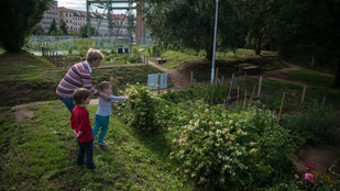 Most jelentkezzen be közösségi kertre!
