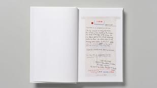 Nick Cave hányózacskókra írta új regényét