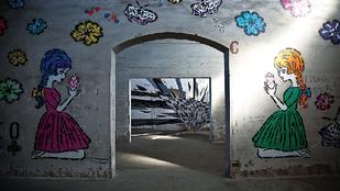 Utcai művészeket gyűjt a Google