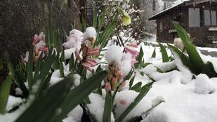 Tényleg megérkezett az áprilisi tél