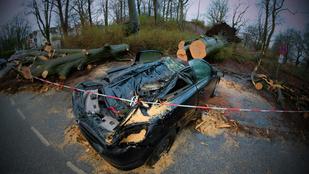 Már kilenc halottat követelt a Niklas-ciklon