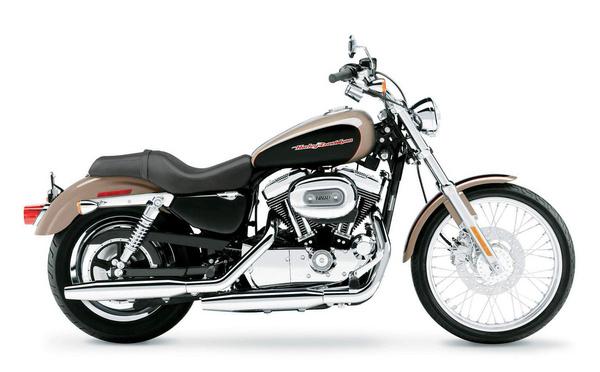 Harley-Davidson Sportster XL 1200 C. C mint Custom
