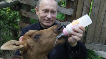 A Time olvasói szerint Vlagyimir Putyin a világ legbefolyásosabb embere