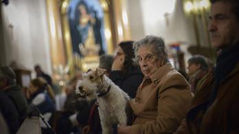 Állatok és wifi is van a világ legmenőbb templomában