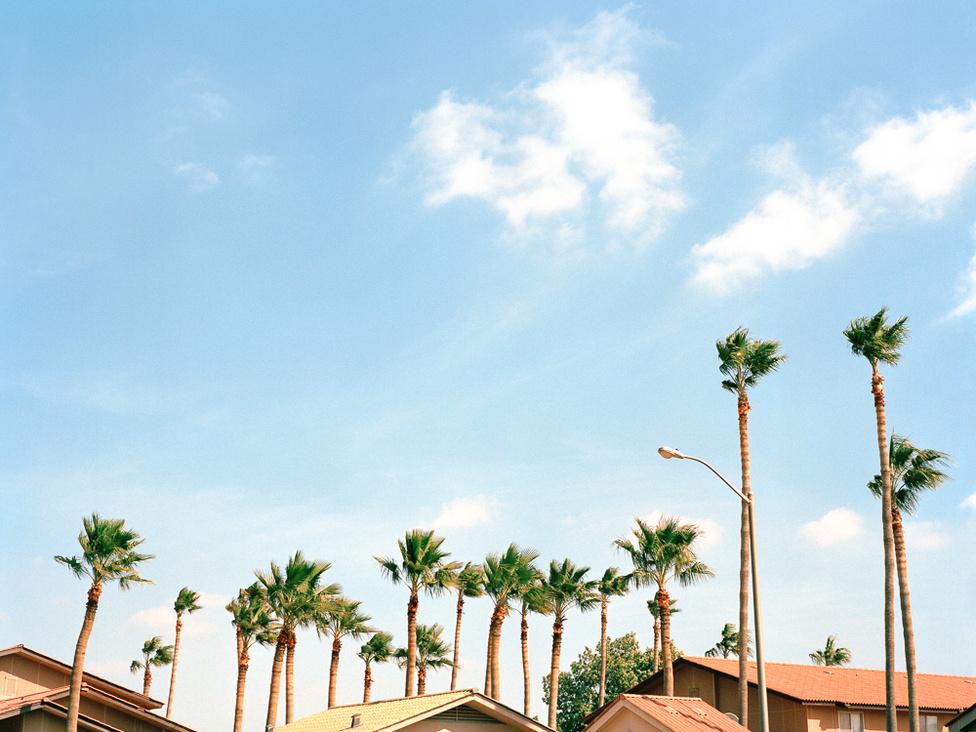 Amikor az Aramco elindult, akkor a pálmafákat még az Egyesült Államokból szállították ide repülővel. Dhahranban egy egész amerikai stílusú kisvárost felhúztak az olajvállalat dolgozóinak, ahol aztán sokszínű világ tárul fel. Ayesha szerint két világ egyesül ezen a helyen: félig Kalifornia, félig Szaúd-Arábia, valójában azonban egyszerre tűnik mindkettőnek, és egyiknek sem.