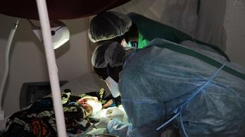 Ebolát találtak egy ember szemében hónapokkal gyógyulása után