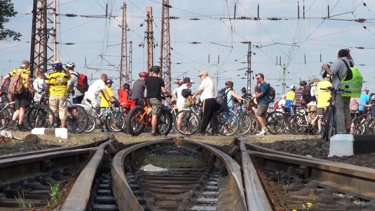 Rákosrendező, ahol minden bicikliút véget ér