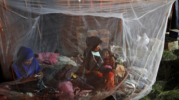 Egyre súlyosabb a menekültkrízis Délkelet-Ázsiában