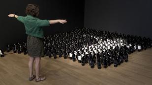 Amikor 450 pingvin követi minden mozdulatát