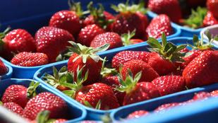 10 ok, amiért érdemes epret enni azon kívül, hogy finom